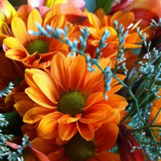 fall-flowers-orange-eatpicks.com 005