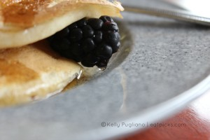 Blackberry Pancake eatpicks