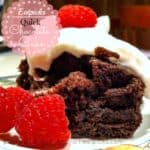 Quick Chocolate Cake Eatpicks pin