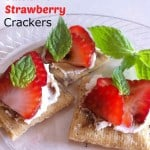 Triscuit Balsamic Strawberry Cracker Snacks
