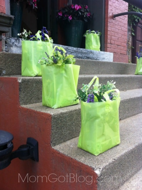flower-in-bags-on-steps-saratoga-momgotblog