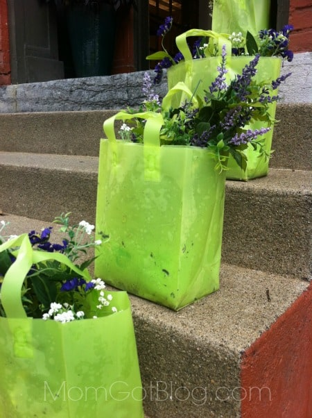 flowers-on-steps-saratoga-NY-momgotblog