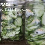 homemade garlic dill pickles eatpicks