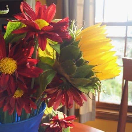 vscom app flowers in vase