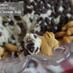 Chocolate Chip Dessert Cheese Ball Recipe