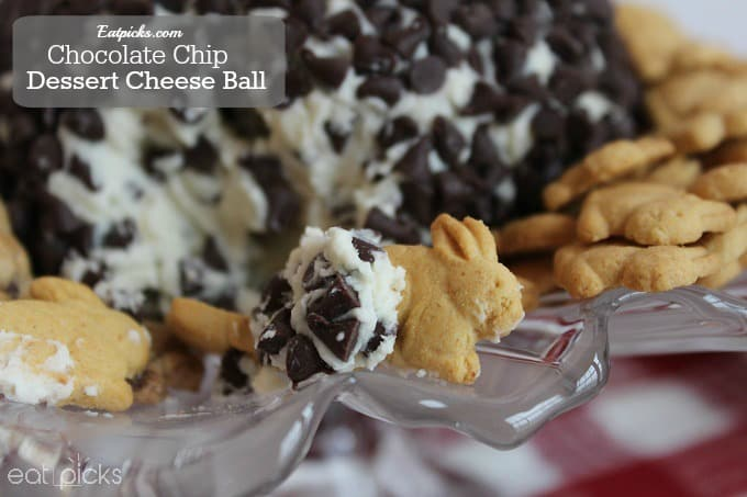 Chocolate Chip Cheese Ball dessert close up
