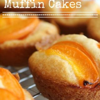 apricot muffin cakes