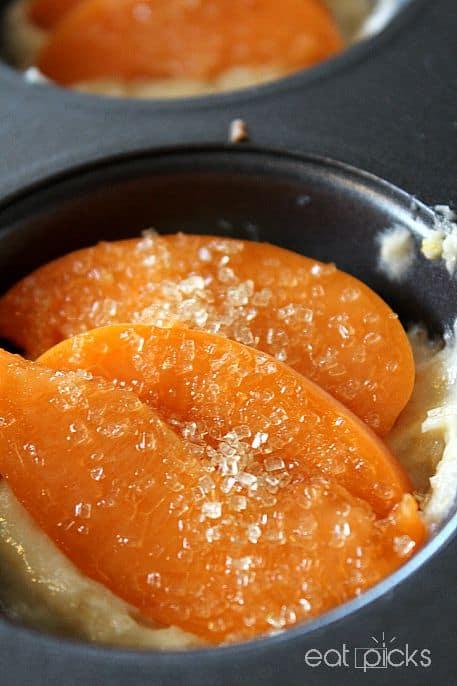 apricot muffin tin