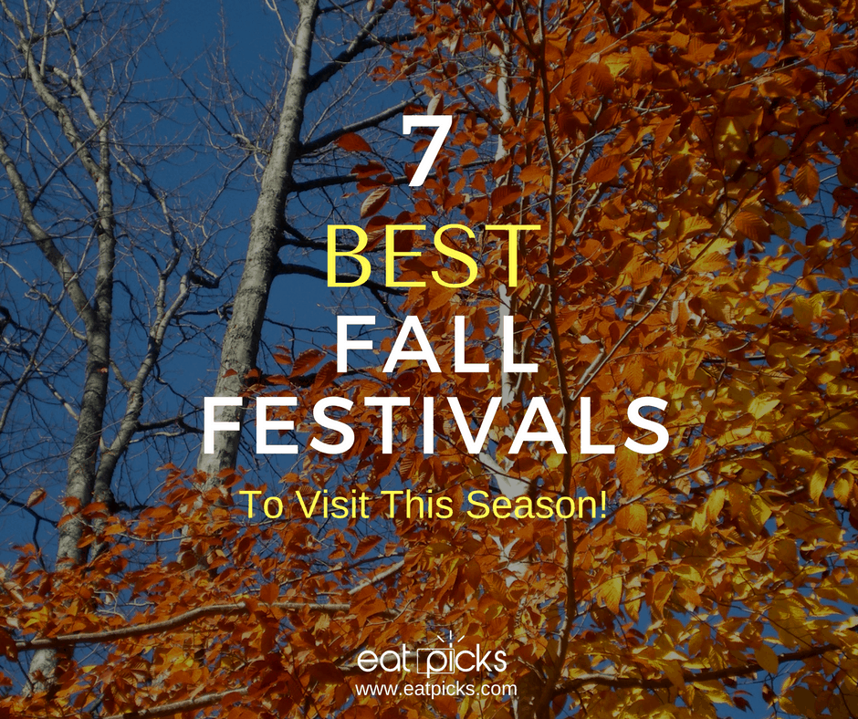 7 Best Fall Festivals to Visit this Season in the Capital District