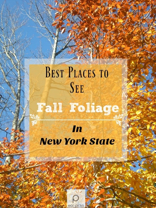 Best Places to See Fall Foliage in New York State! Grab your planner and get ready for a colorful road trip as you travel through this great state exploring beauty around every turn.