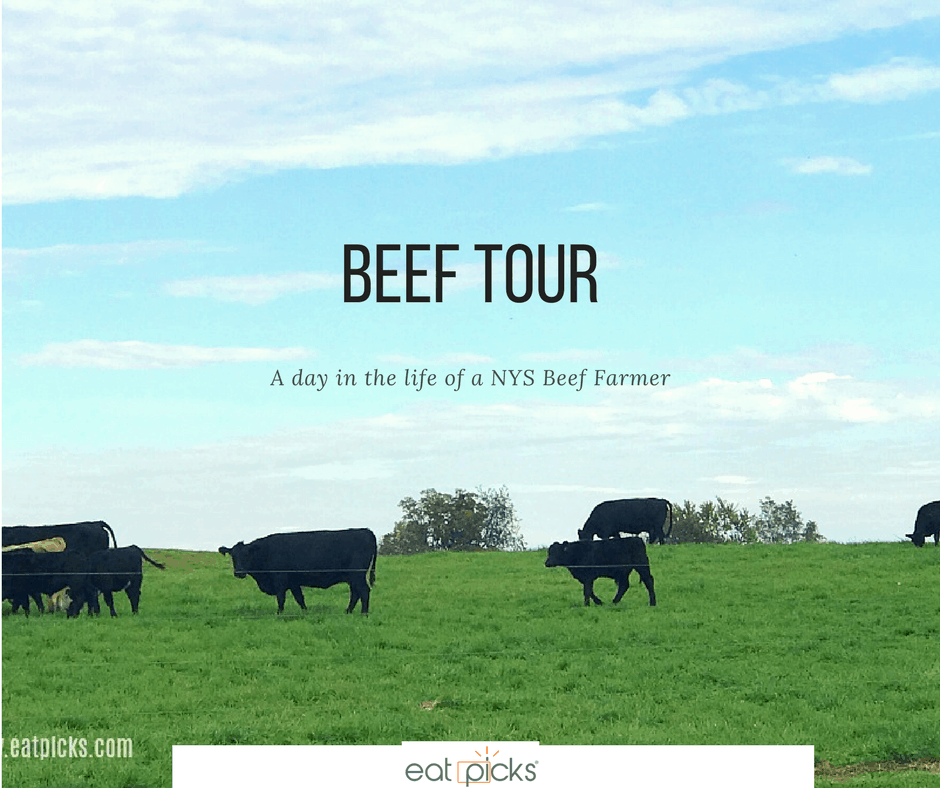 New York State Beef Tour