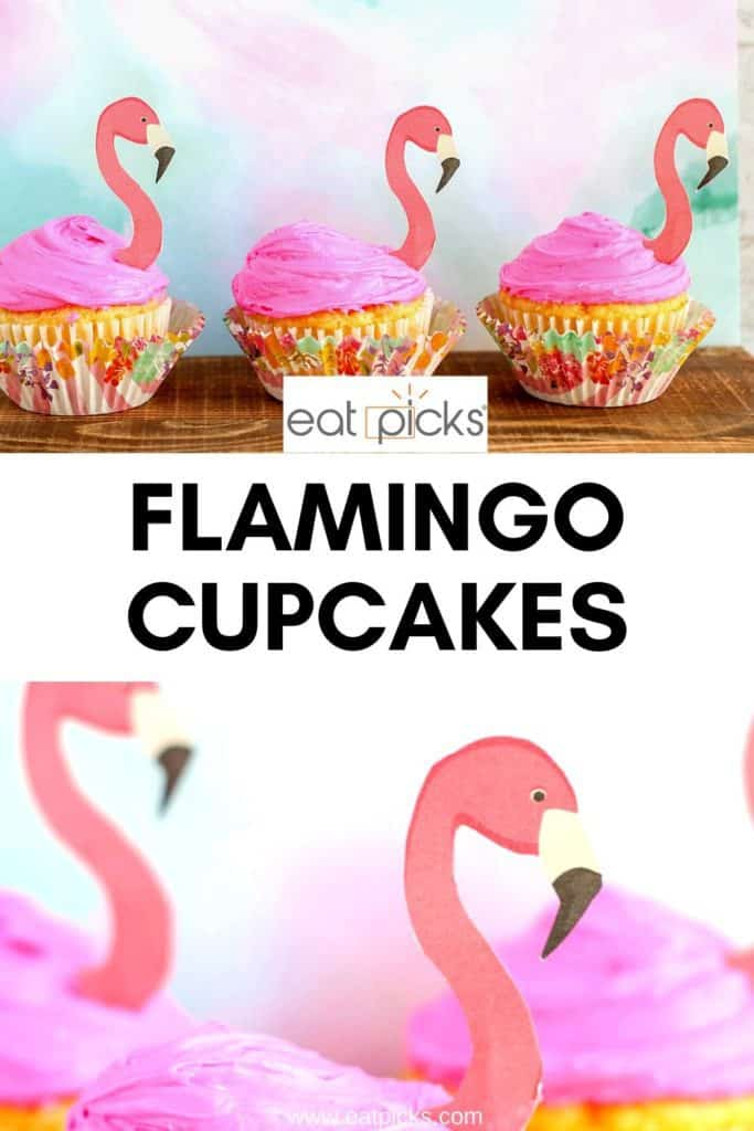 Flamingo Cupcakes Pin